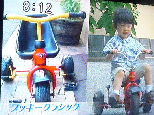 http://www.hyakuchomori.co.jp/blog2/i/090907_tokudane_3.jpg