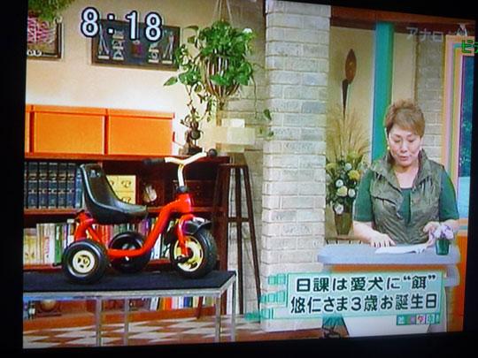 http://www.hyakuchomori.co.jp/blog2/i/090907_tokudane_5.jpg