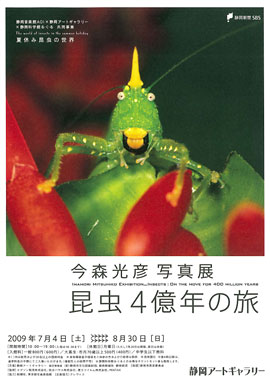 0907_sag_imamori_image.jpg