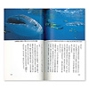 カラー版  海と親しもう 遊ぶ・観察する・学ぶ:著者の伊藤さんが最も愛するジンベエザメ