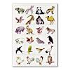 遊び用カード190枚1セット(動物・植物・交通):
