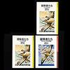 岩波少年文庫の装丁の歴史:写真07:現行仕様である第6期(右下)と第5期の比較。高さはそのままで幅が113mmから120mmに広がった。この「冒険者たち」は絵も書き直されている。