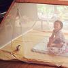 ムカデントδ(デルタ):テントのように底の部分まで一体化。ジッパーで遮断します。
