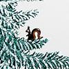 冬のモミの木 20cm:枝にリスが
