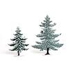 冬のモミの木 20cm:14cmと20cmの比較