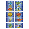クライネフィッシュ:得点は同じ種類の魚ごとに1枚だけ