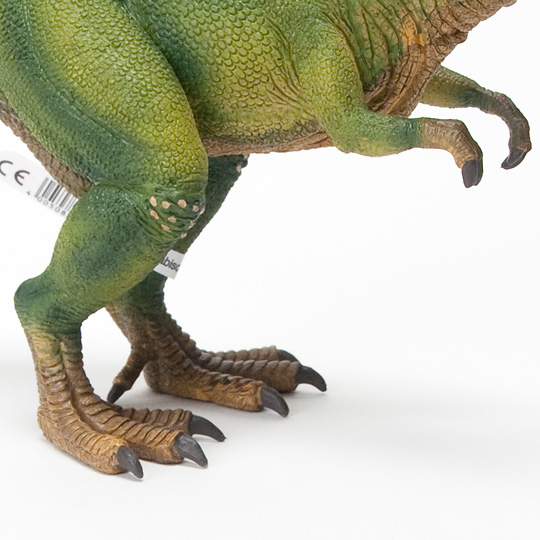 ティラノサウルスの前足と後ろ足の大きさ