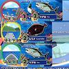ギョっと:3つの釣り場に魚カードを置く。