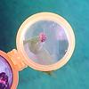 オプティックワンダー 黄:小さな生き物も観察できる