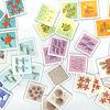 ささっと!:カードには、亀が5匹とか、アイスが2個とか、いろいろなモチーフが描かれています。