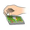 ハリガリ・ジュニア:カードは相手側にめくります。