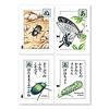 昆虫カード: