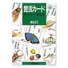 昆虫カード:56ページの解説書