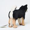 柴犬 黒: