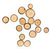 森の仲間さがし:得点をしめす木のコイン