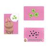 パクッとプリッと:動物カード、食べものカード、うんちカードは背景の色を揃えてあるので、ヒントになります。